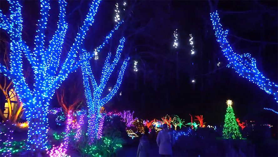 Drive and Walk Through Holiday Light Show